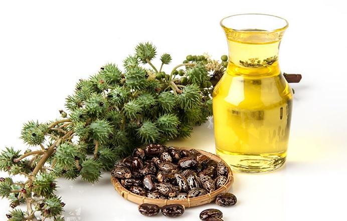 3 рецепти маски для росту волосся з рецинової олії