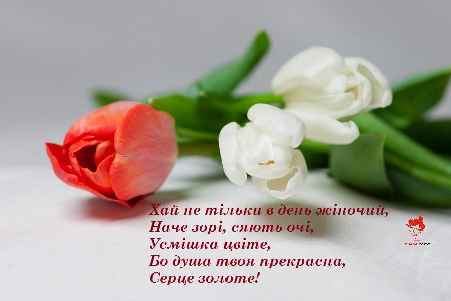 8_bereznya_2020_4.jpg (115.19 Kb)