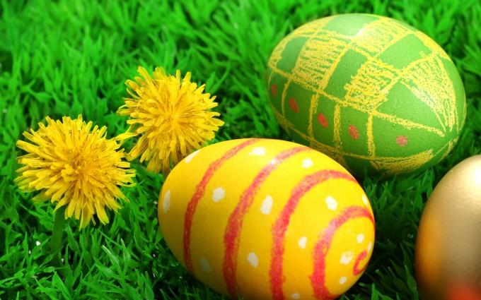 egg1.jpg (93.4 Kb)