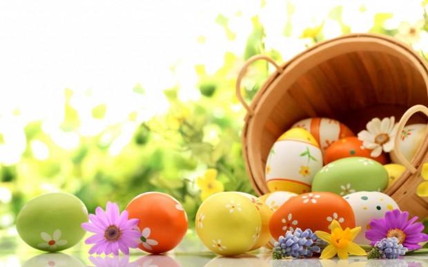 egg3.jpg (.7 Kb)
