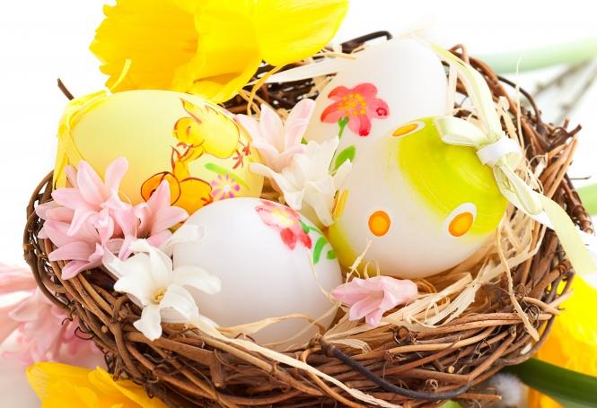 egg7.jpg (124.01 Kb)