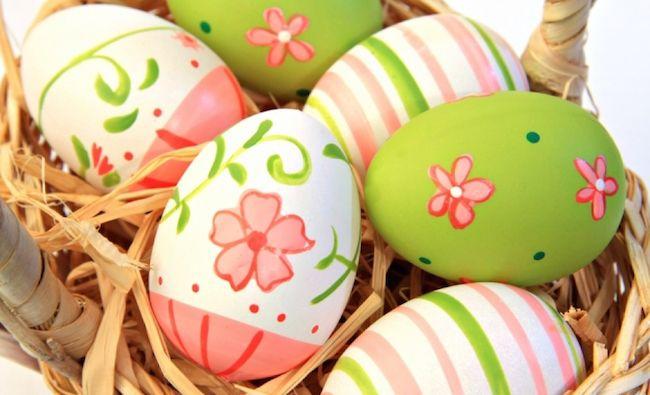 egg8.jpg (43.92 Kb)