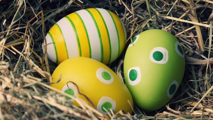 egg9.jpg (225.82 Kb)