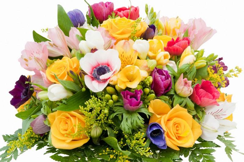 Які квіти подарувати коханій, мамі, учительці та колезі