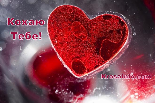 heart.jpg (73.47 Kb)