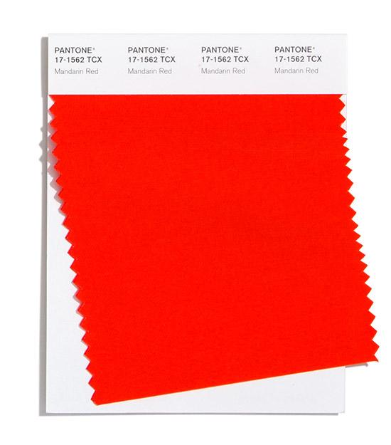 mandarin-red.jpg (54.44 Kb)