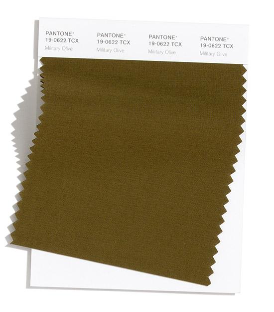 military-olive.jpg (75.37 Kb)