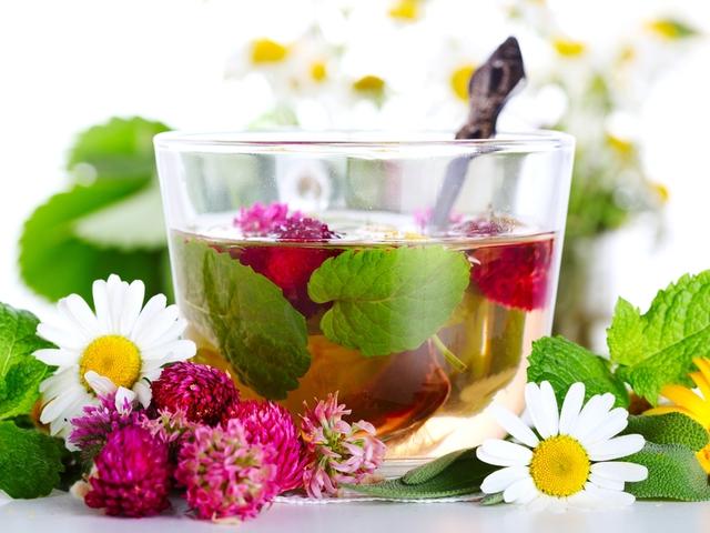 Якими травами найкраще вилікувати застуду